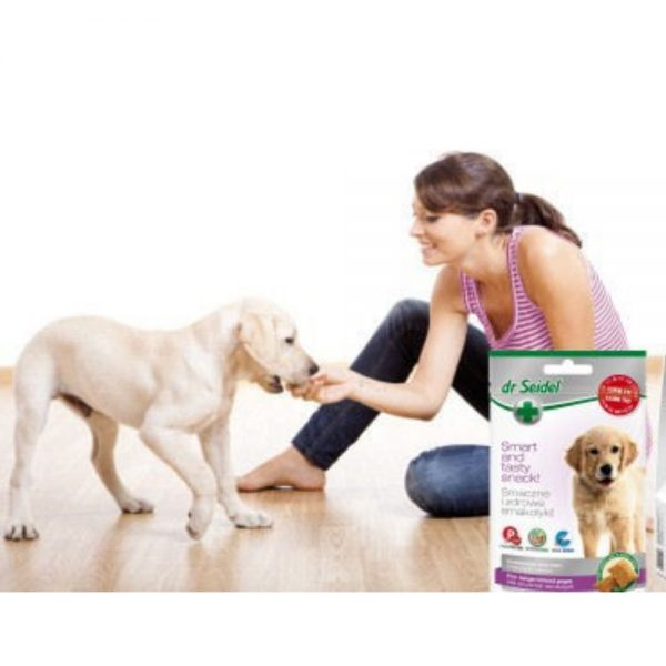 Dog Healthy Snacks from dr Seidel