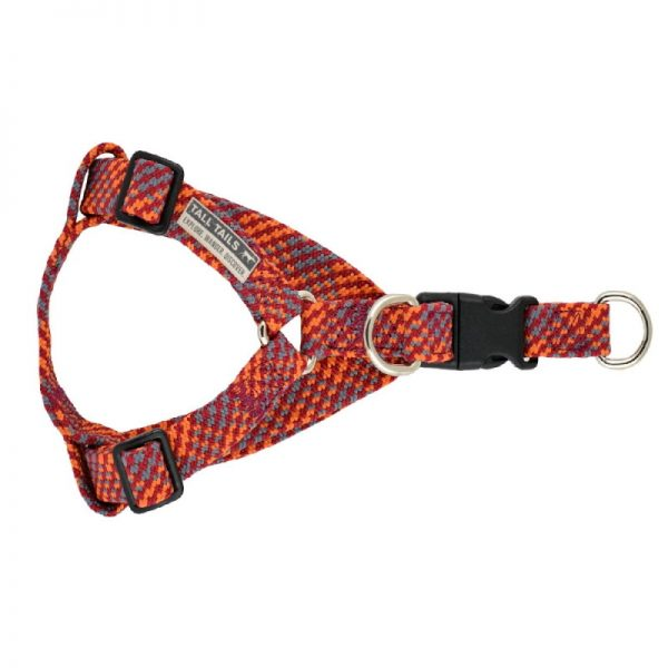 Braided Multicolor Dog Harness from Tall Tails