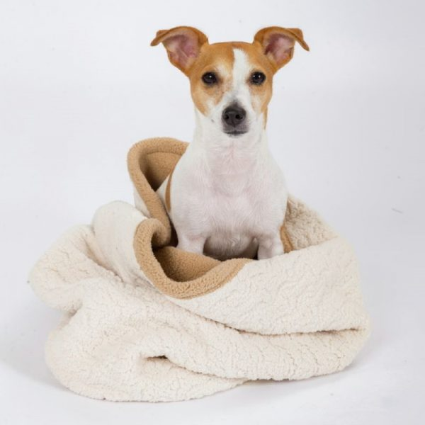 3-in-1 Cream Burrow Bed from Tall Tails