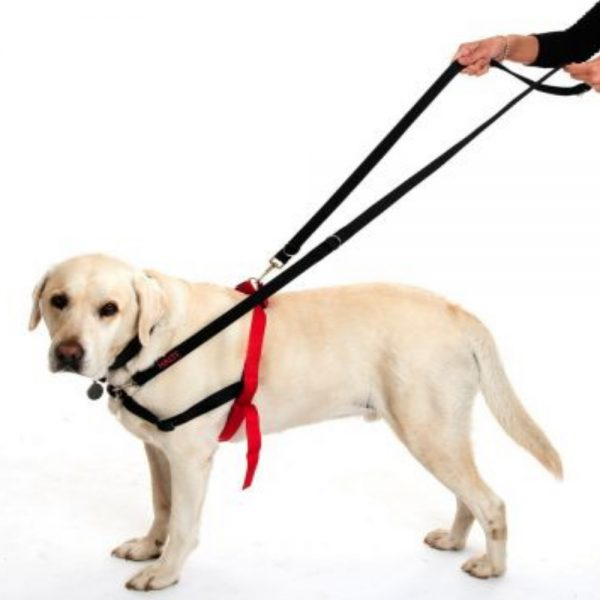 Halti Double Guiding Harness