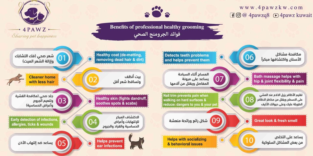 https://www.4pawzkw.com/wp-content/uploads/2021/05/Benefits-of-Grooming-1280x640.jpg